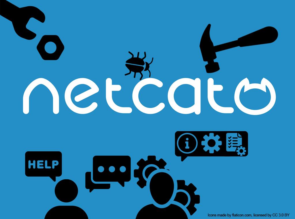 CMS NetCat: техническая поддержка и доработка сайтов